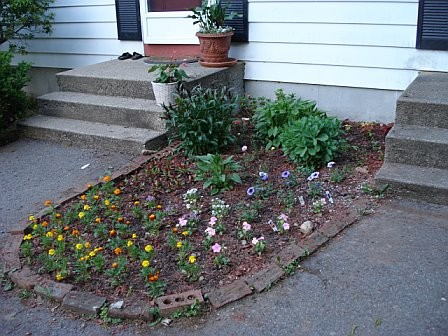 front-flower-bed.jpeg